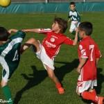 21052017 - Turnir Kras Cicibani 2008 2010-1163
